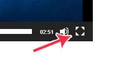 フルスクリーンボタン